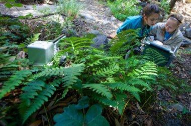Amanda using the LI6400