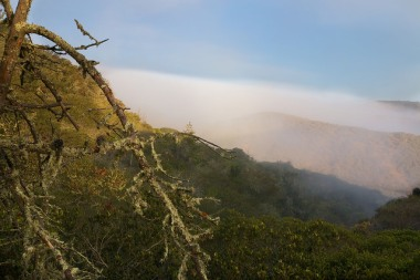morning fog on the Santa Cruz Island