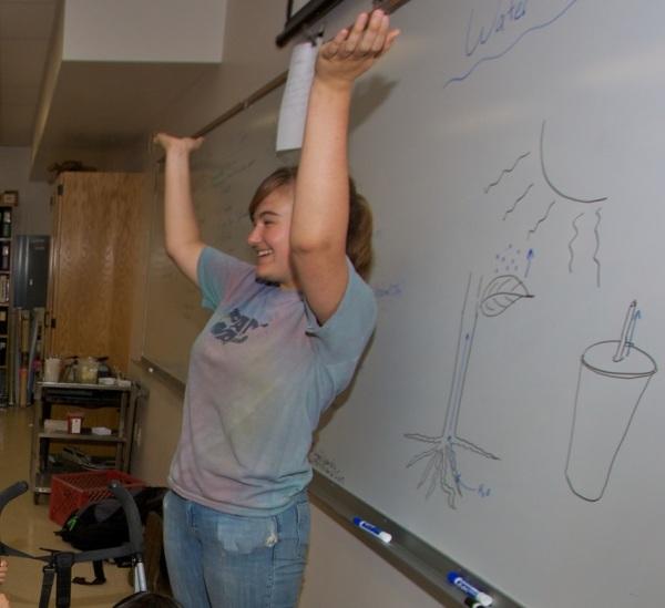 whiteboard large