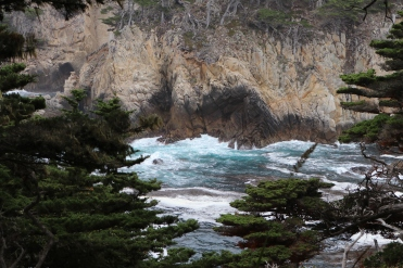 Point Lobos, CA, July 2016