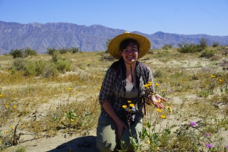 enjoying the Anza Borrego superbloom